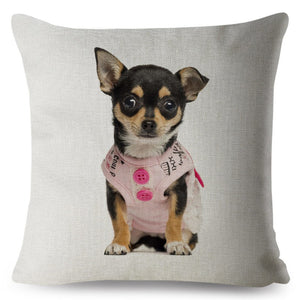 Pillow(HD034) Let's hit the town.. Chihuahua Puppy