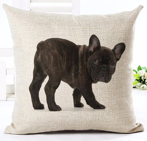 Pillow(HD016) Brindle French Bulldog Puppy
