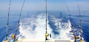 Saltwater Fishing Gear: Rods, Reels and Baits