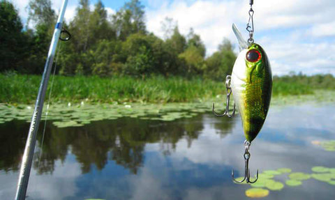 Summer Bass Fishing Lures