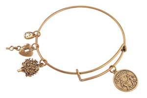 Zodiac Bangle - 50% OFF!