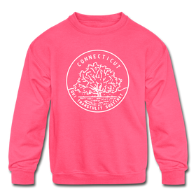 Connecticut Youth Sweatshirt - State Design Youth Connecticut Crewneck Sweatshirt