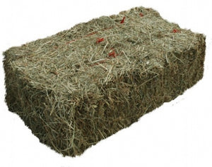 Barley Straw 25 lb Bale for Algae Control