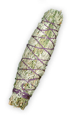 Land of Enchantment Desert Sage Smudge Stick