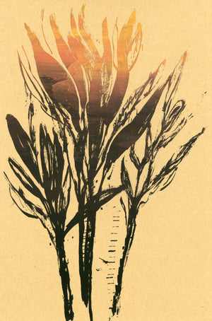 House Plant Sunset Monotype