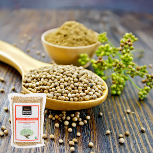 7 Health Benefits of Coriander Seeds