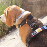 Premium Harness - Flag Brown