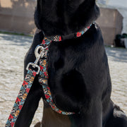 Daily Harness - Dogs & Cats