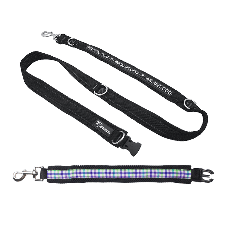 Premium Multifunctional Leash - Picnic