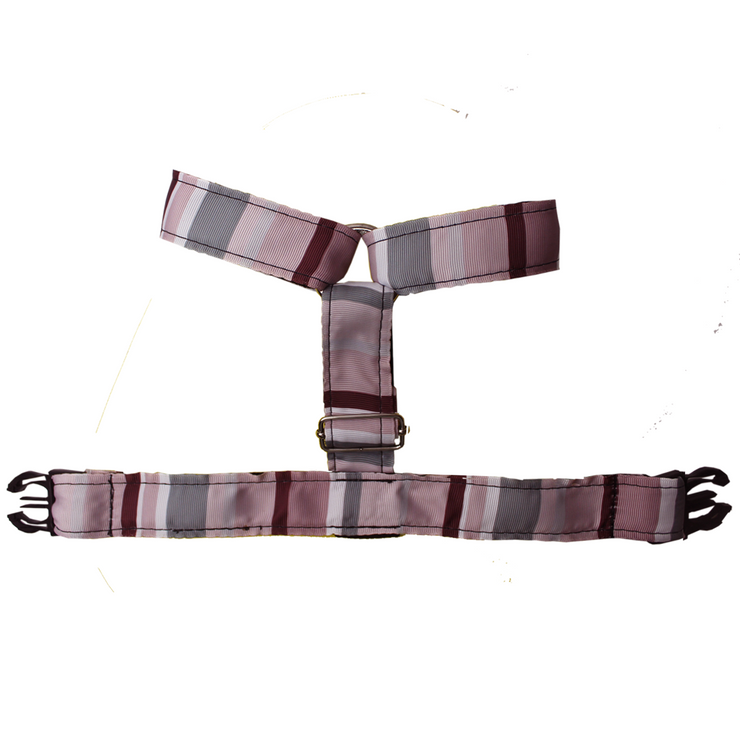 Daily Harness - Flag Salmon