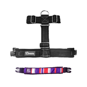 Premium Harness - Flag Blue