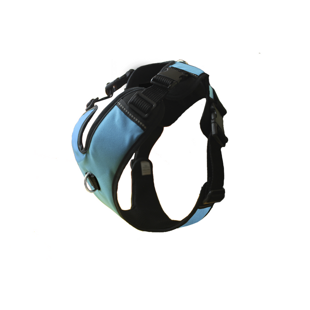 Work Harness - Turquoise
