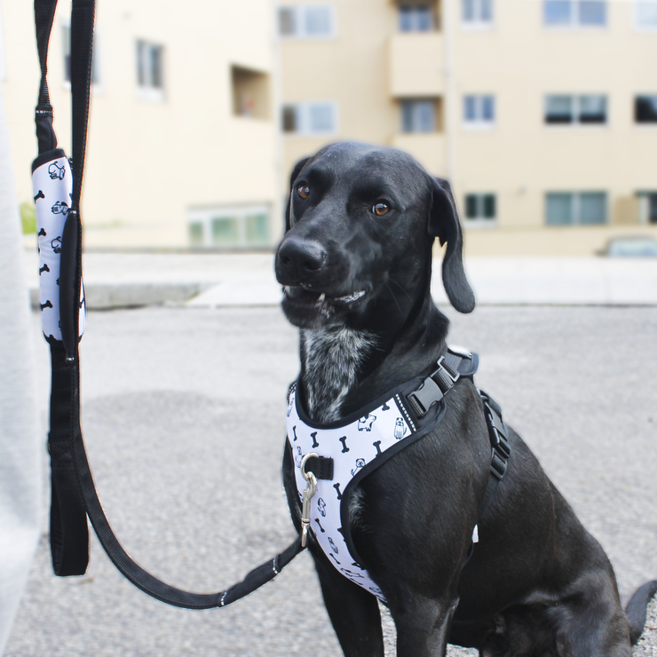 Bag for Work Leash - Black and White
