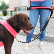 Premium Multifunctional Leash - Coral