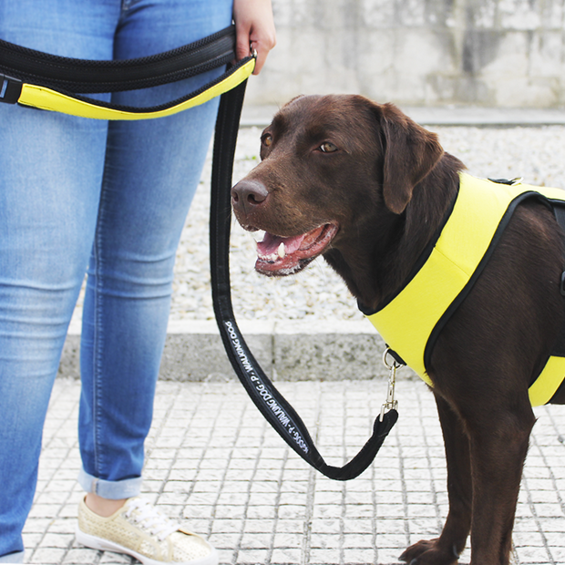 Premium Multifunctional Leash - Lemon