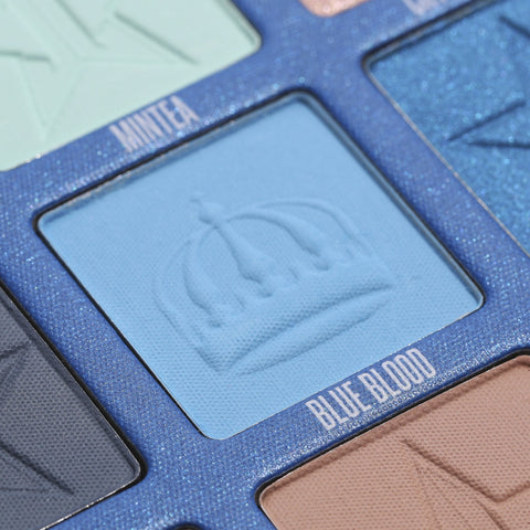 BLUE BLOOD PALETTE BLUE BLOOD SHADE CLOSE-UP