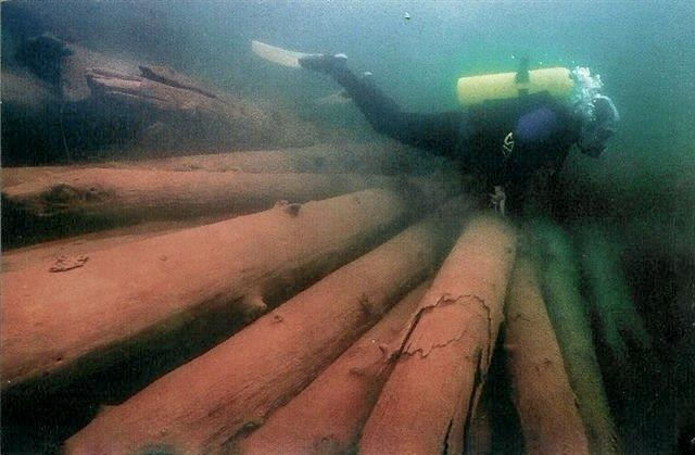 About us- Diving for Logs