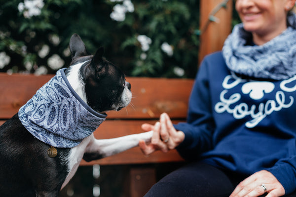 Matching Sets: Infinity scarf & Dog Neck Scarf - Neptune's Realm