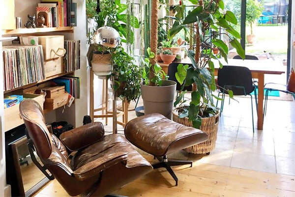 Top 10 Ideas On Where To Place Your Eames Chair Replica Eternity Modern