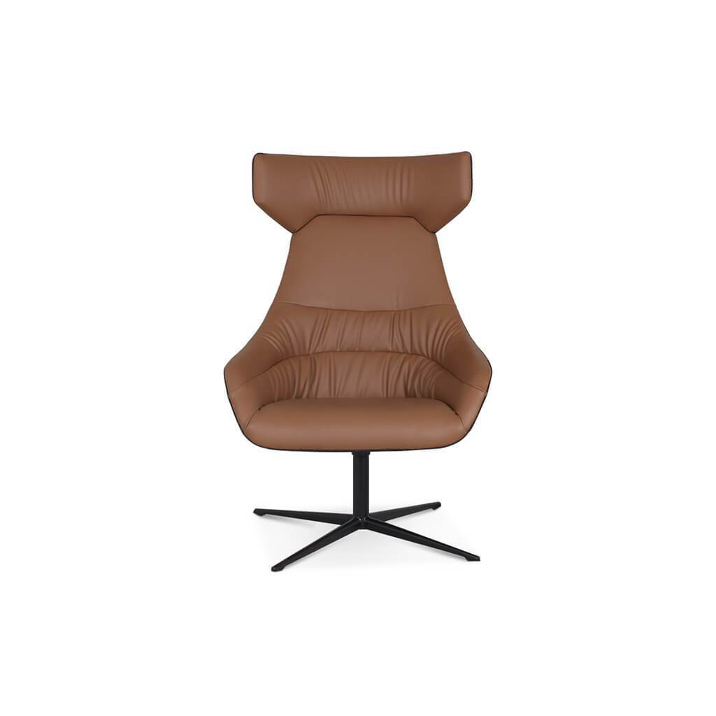 Lounge Chair High Back Vintage Brown foto