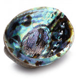 Large Natural Rainbow Abalone Shell Smudge/Offering Bowl