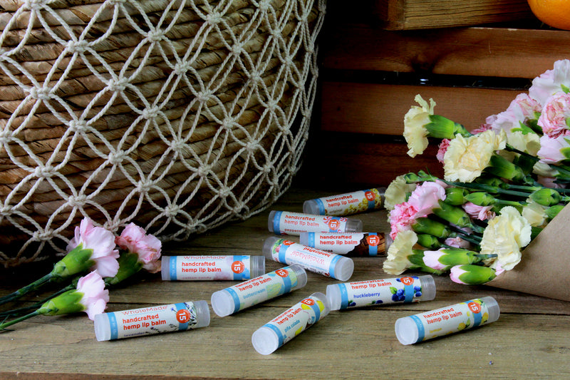 Hemp Lip Balm 12 Pack Case