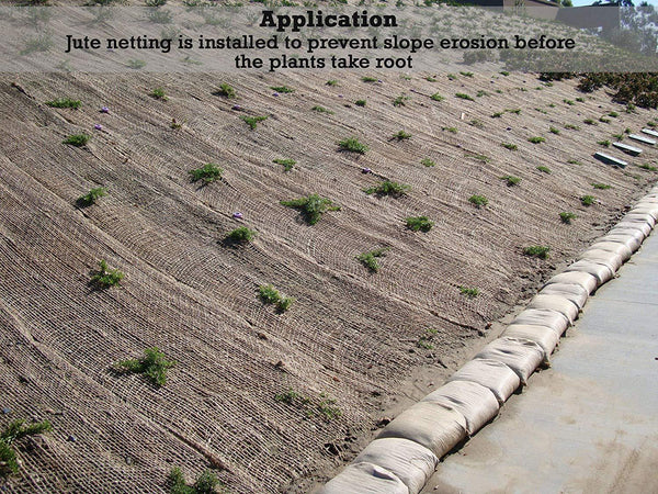 Application: Jute netting is installed to prevent slope erosion before the plants take root