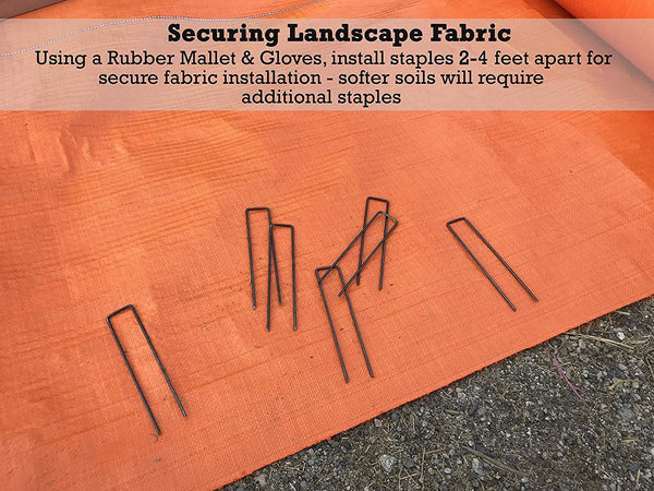 Securing landscape fabric: using a rubber mallet and gloves, install staples 2-4 feet apart for secure fabric installation. Softer soils will require additional staples.