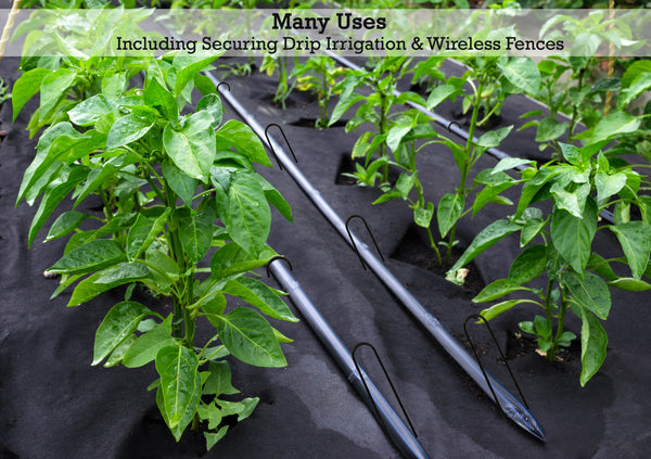 12-inch landscape staples have many uses, including securing drip irrigation and wireless fences