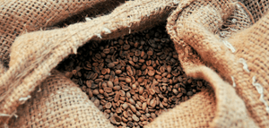 Bag of unroasted imported coffee beans