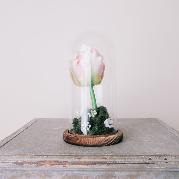 Spring Tulip Glass + Wood Cloche Arrangement