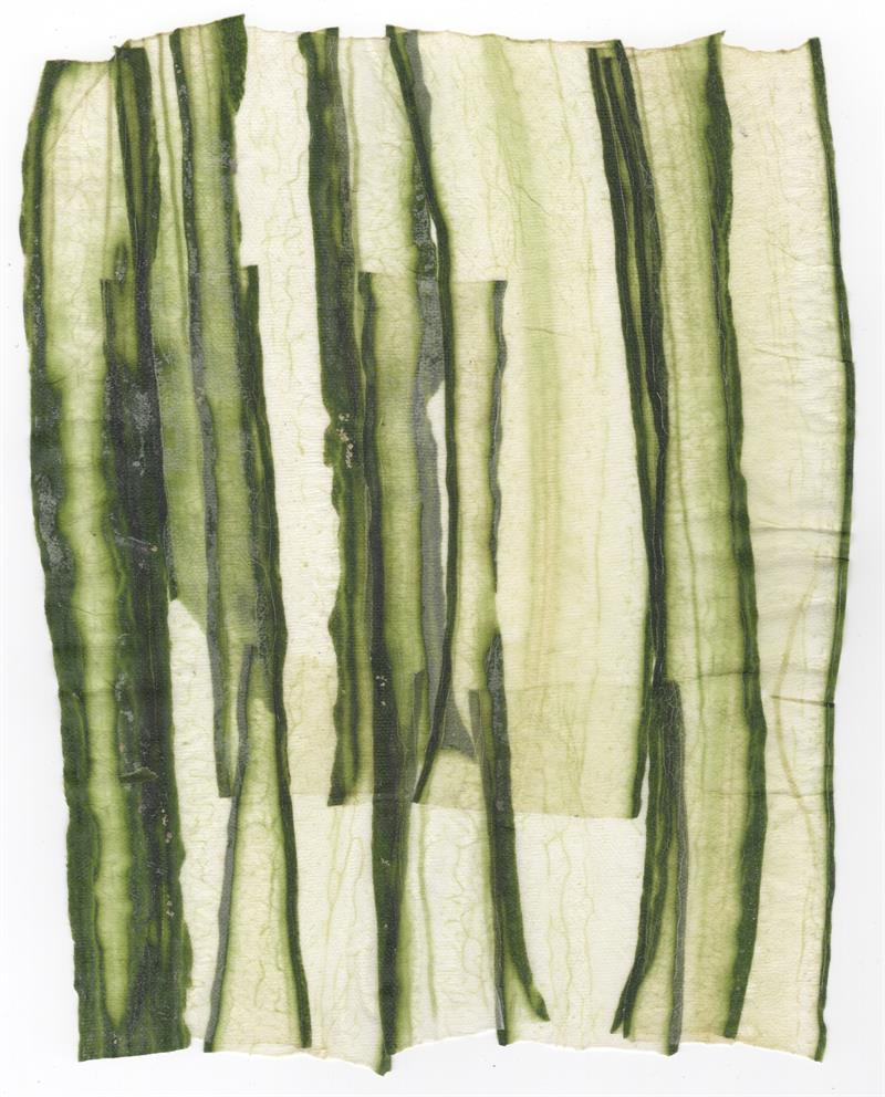 VF Papyrus - Cucumber Long Cut