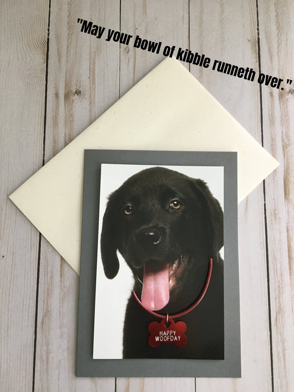 Pet Greeting Cards - Bubbles Gift Shoppe
