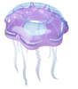 Big Mouth Jelly Fish