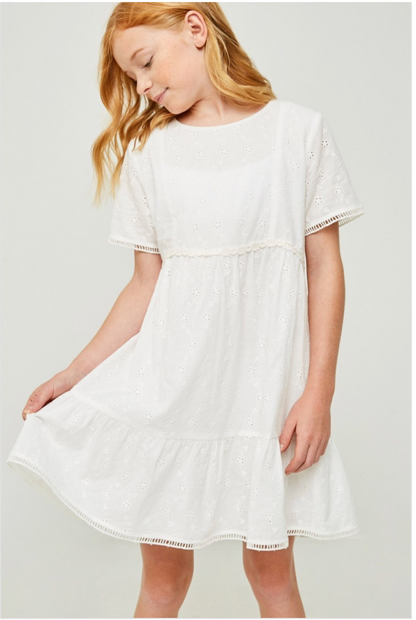 Embroidered Eyelet Ruffle Mini Dress