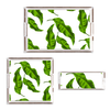 BANANA LEAVES and OYSTER LUCITE TRAYS