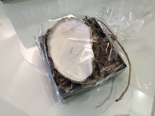 Single Oyster Candle