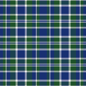 Green Plaid Patterned HTV - PV60003 - Blue Sapphire