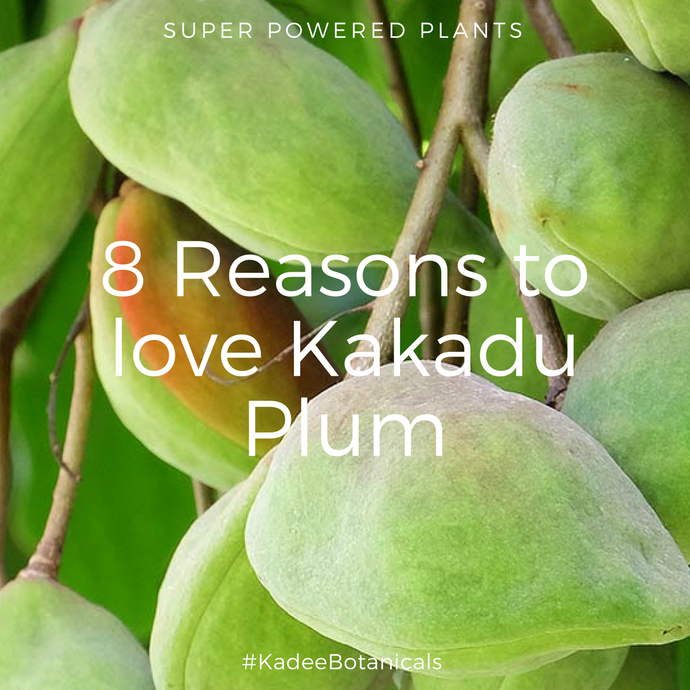 8 Reasons to Love Kakadu Plum