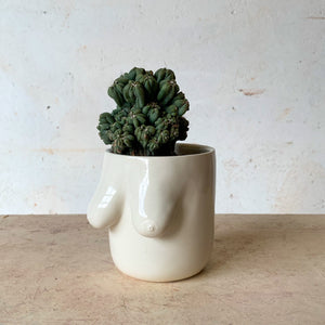 Second Gabrielle Planter