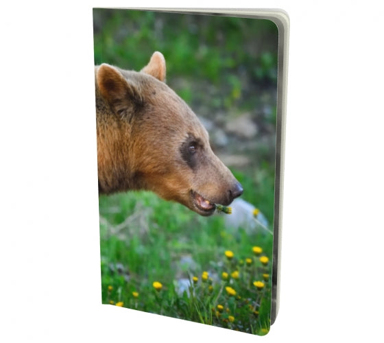 Bear Essentials notebook by Mountain Moves - front cover