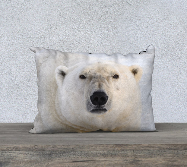 Icy Stare Colour Pillow