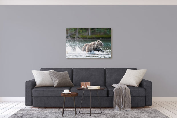 Photo Finish grizzly bear photograph by Carrie Servos