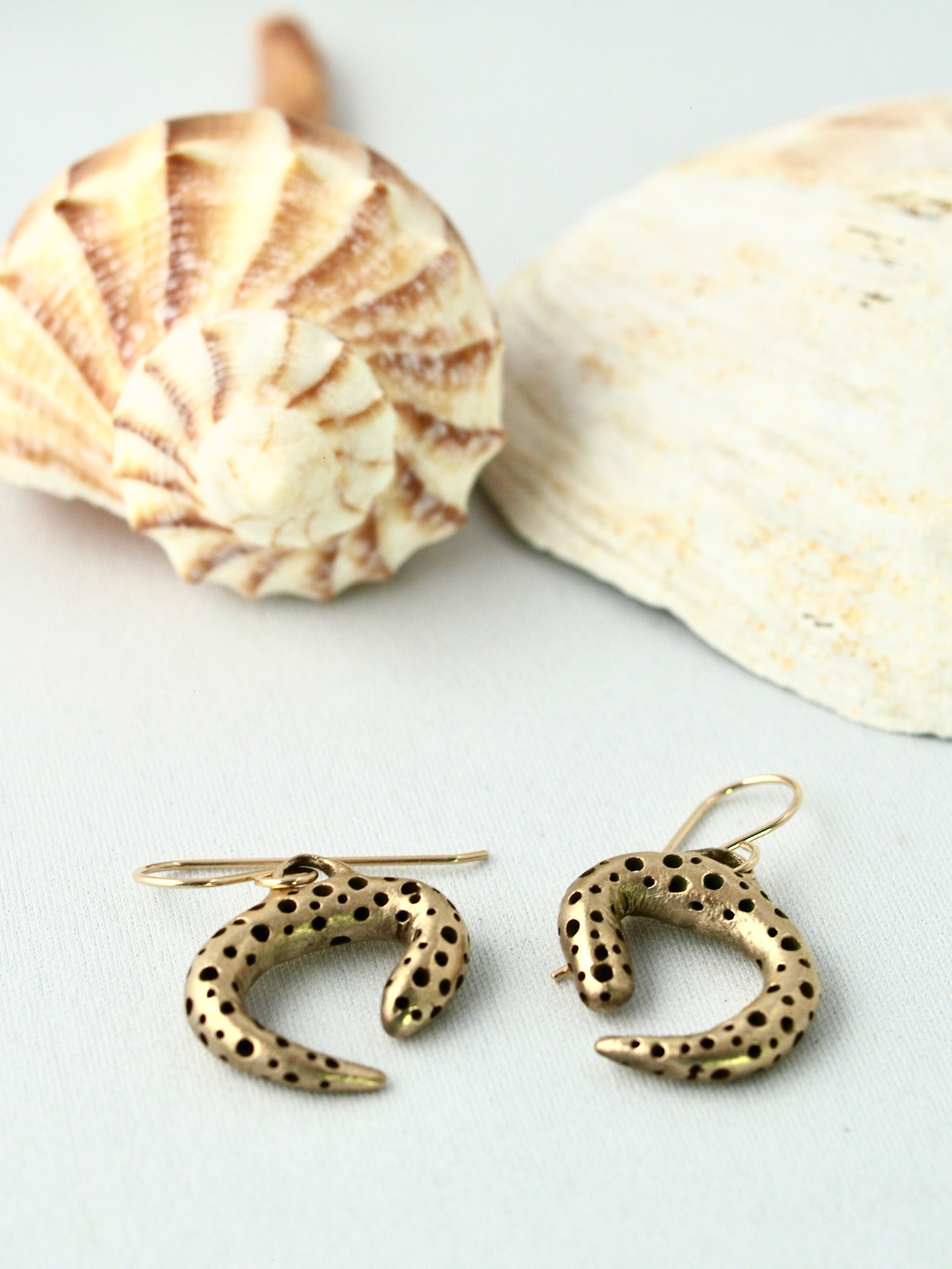 Coral like bronze earrings spiral shell