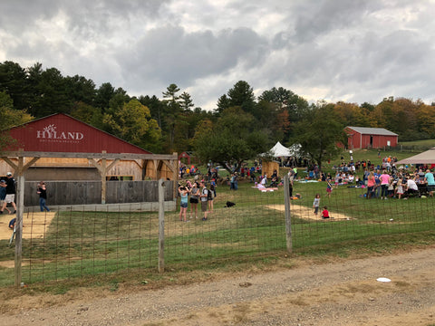 Hyland Apple Orchard and Brewery in Mass