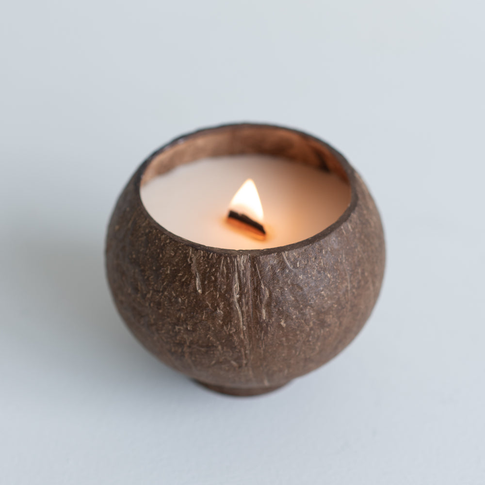 coconut cup outdoor insect repellent candle