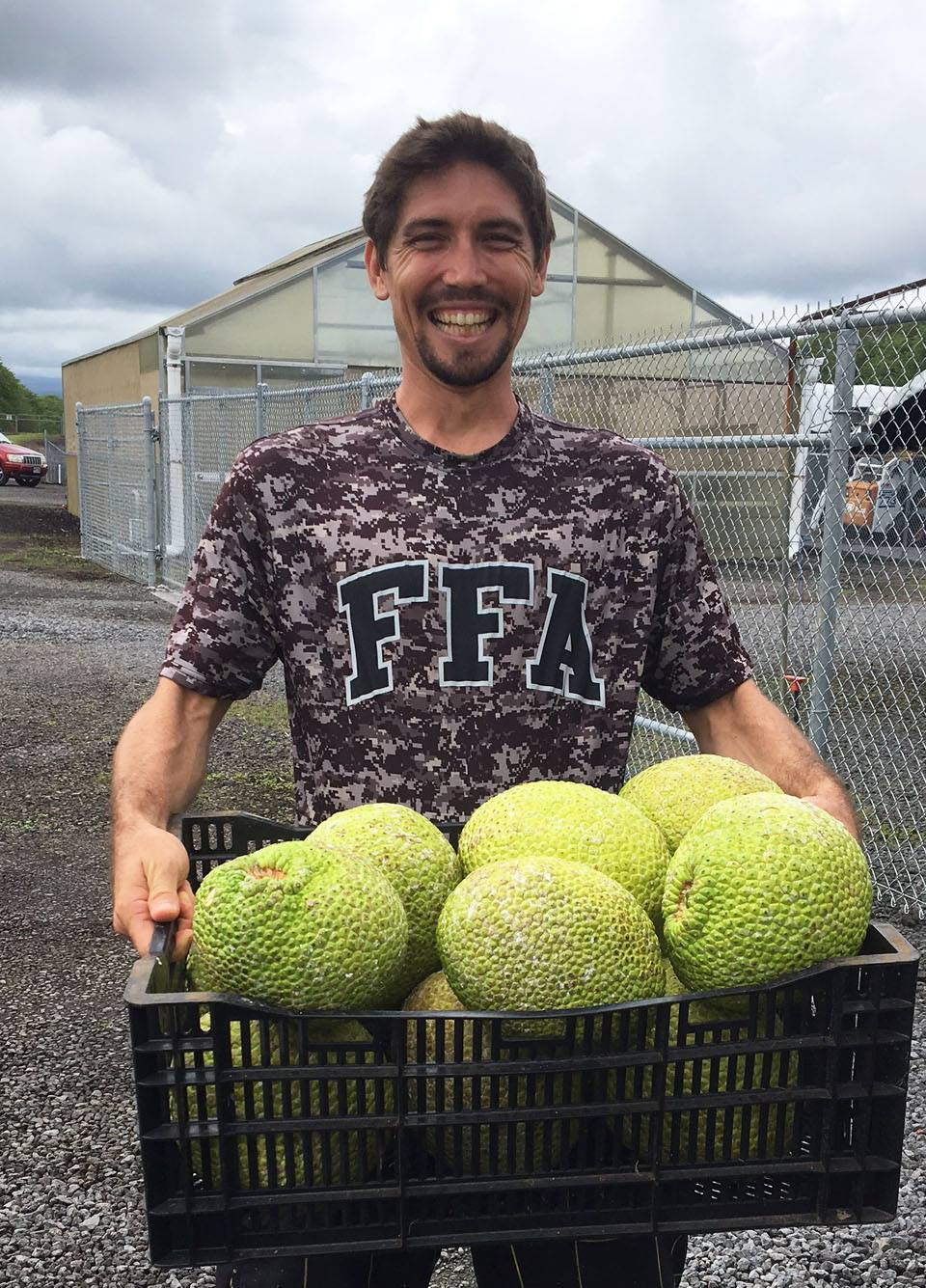 Hawaii Ulu Co-op member holding tray of harvested breadfruit