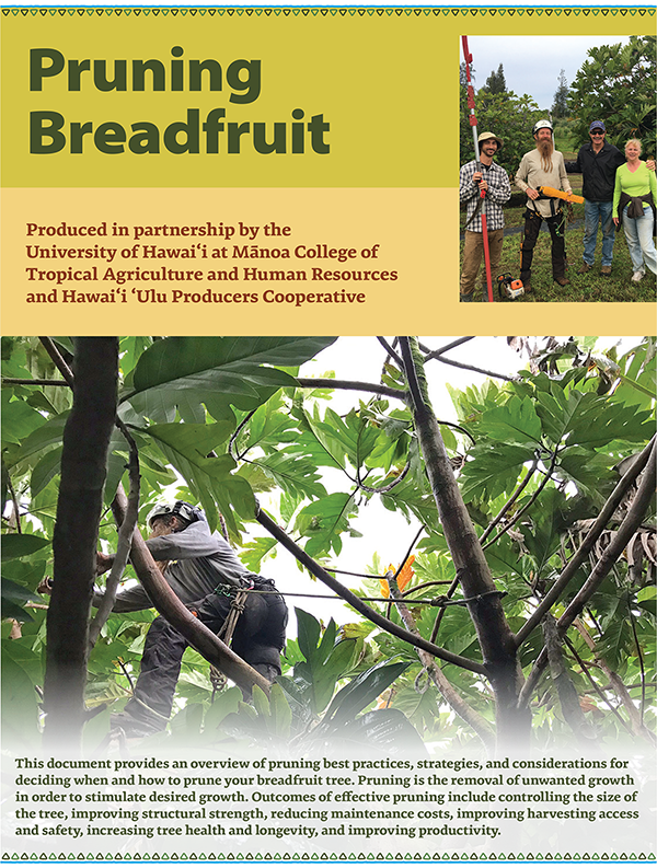 Pruning Breadfruit Handbook
