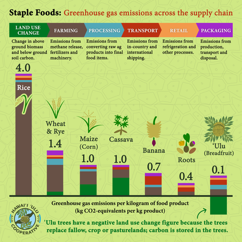 graph comparing greenhouse gas emissions of staple foods