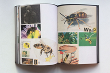 Animal Books For